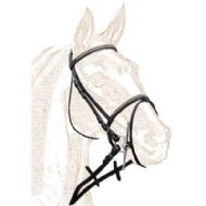 Single bridle with brass clincher browband